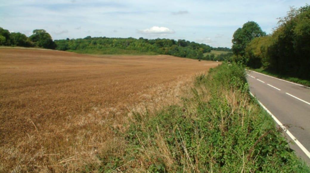 Foto 'Biggin Hill' van Philip Talmage (CC BY-SA) / bijgesneden versie van origineel