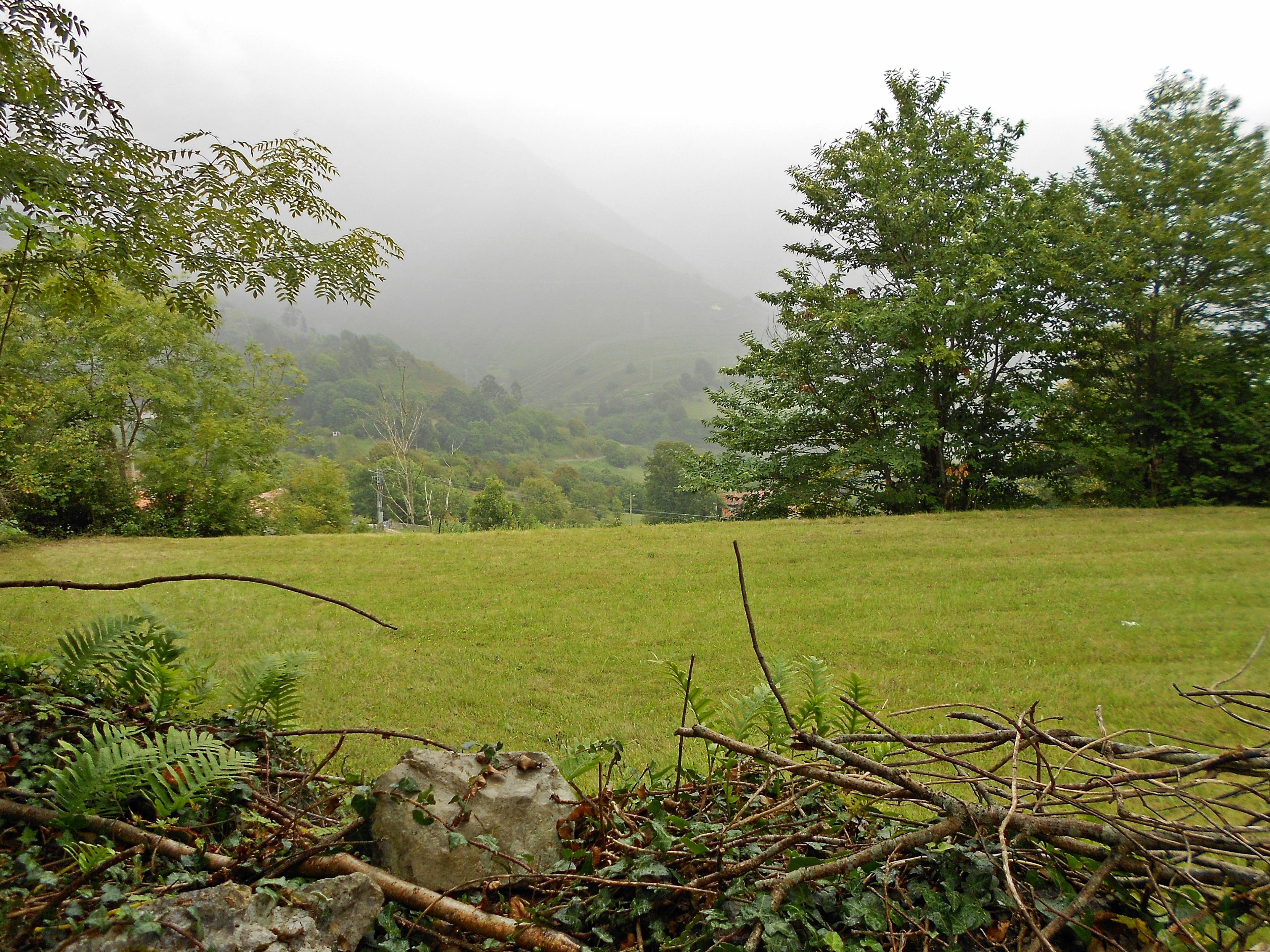 Peñamellera Alta, Asturias, Spanje