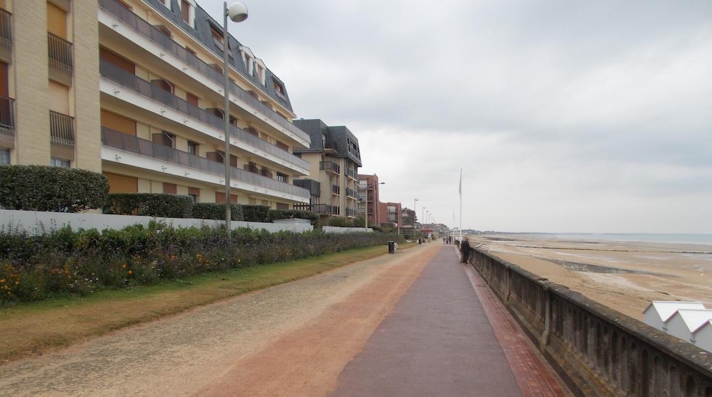 «Promenade Marcel Proust», photo de Itto Ogami (CC BY) / rognée de l'originale
