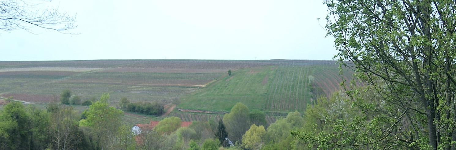 Erbes-Büdesheim, Germany