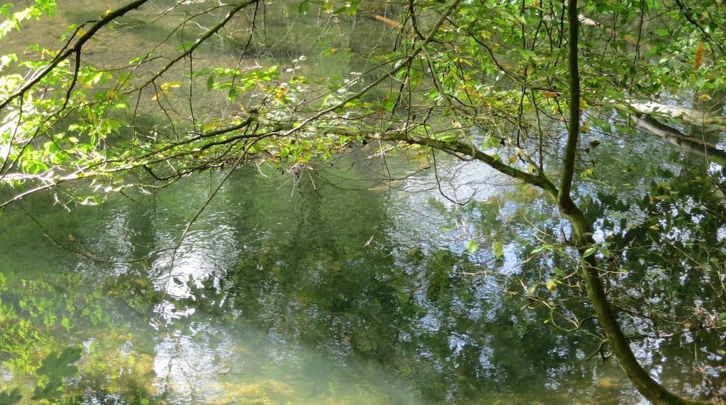 """Foto """"Herzberg am Harz"""" von C.Löser (CC BY)/zugeschnittenes Original"""