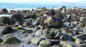 Llandanwg Beach