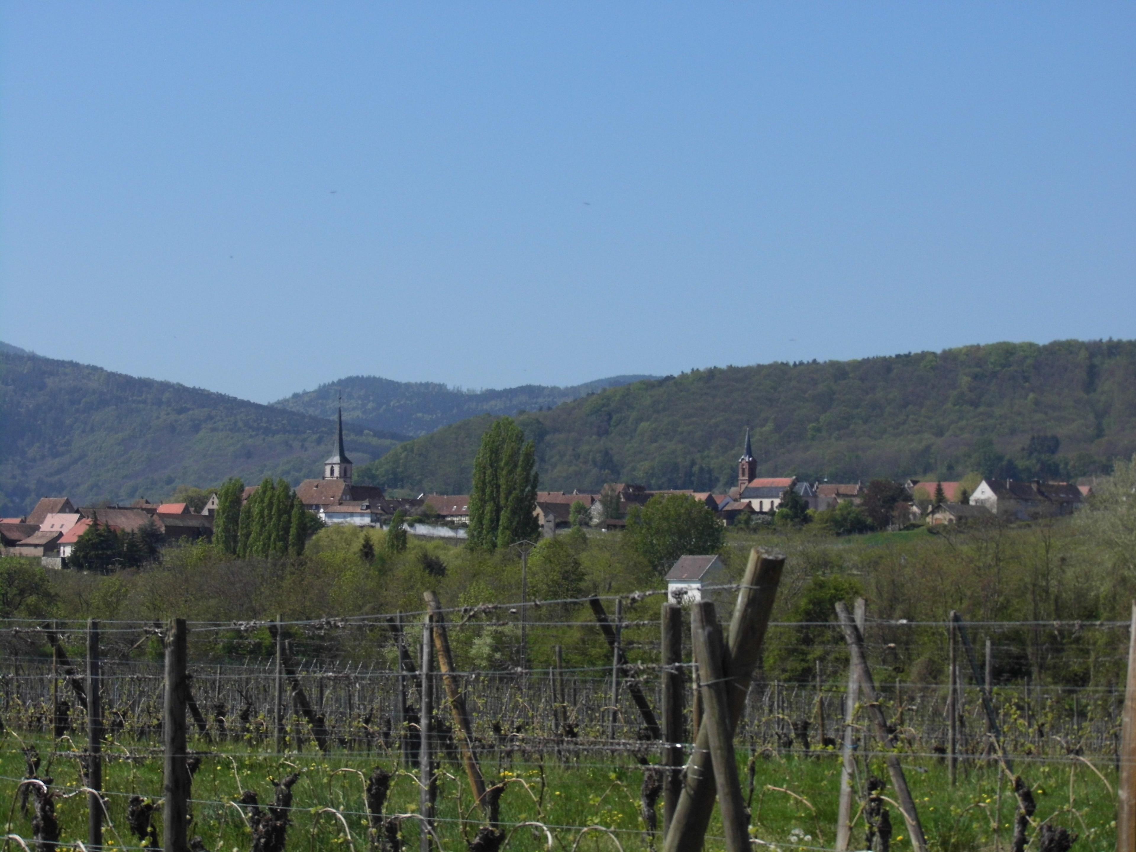 Mittelbergheim, Bas-Rhin, France