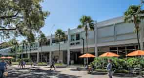 אוניברסיטת מיאמי
