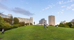 Park Wakashio