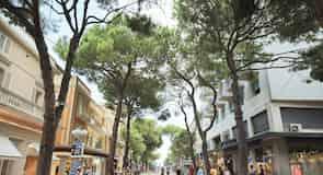 Viale Ceccarini (iela)