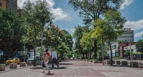 Avienda Chapultepec