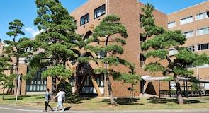 Sveučilište Tohoku
