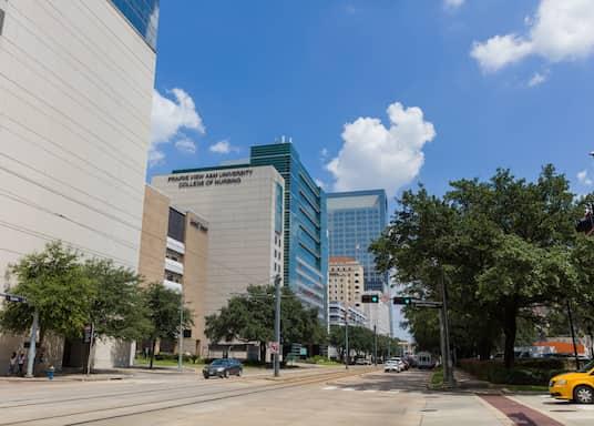 Houston, Teksasa, Amerikas Savienotās Valstis