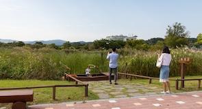 Parc écologique de la baie de Suncheonman