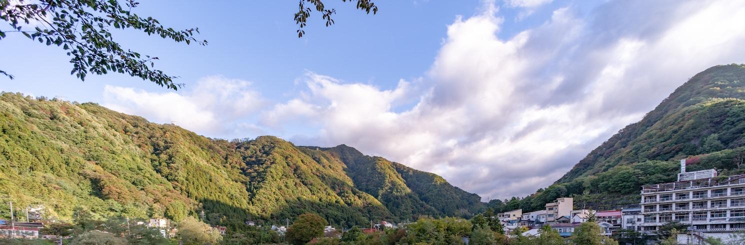 ميناكامي, اليابان