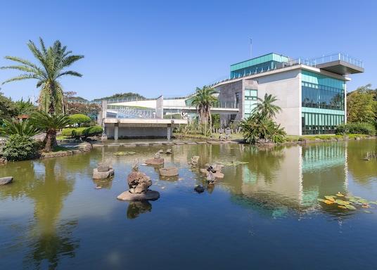 Jeju City, South Korea
