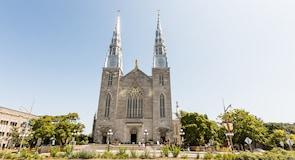 ノートルダム大聖堂バシリカ