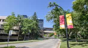 Університет Калгарі