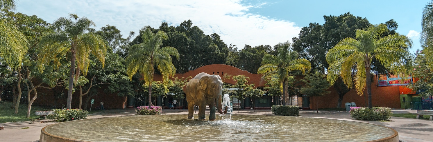 Гвадалахара, Мексика
