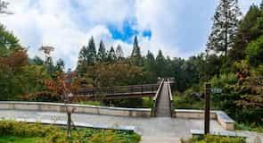 Parque Zhaoping