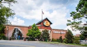 Savannah Mall