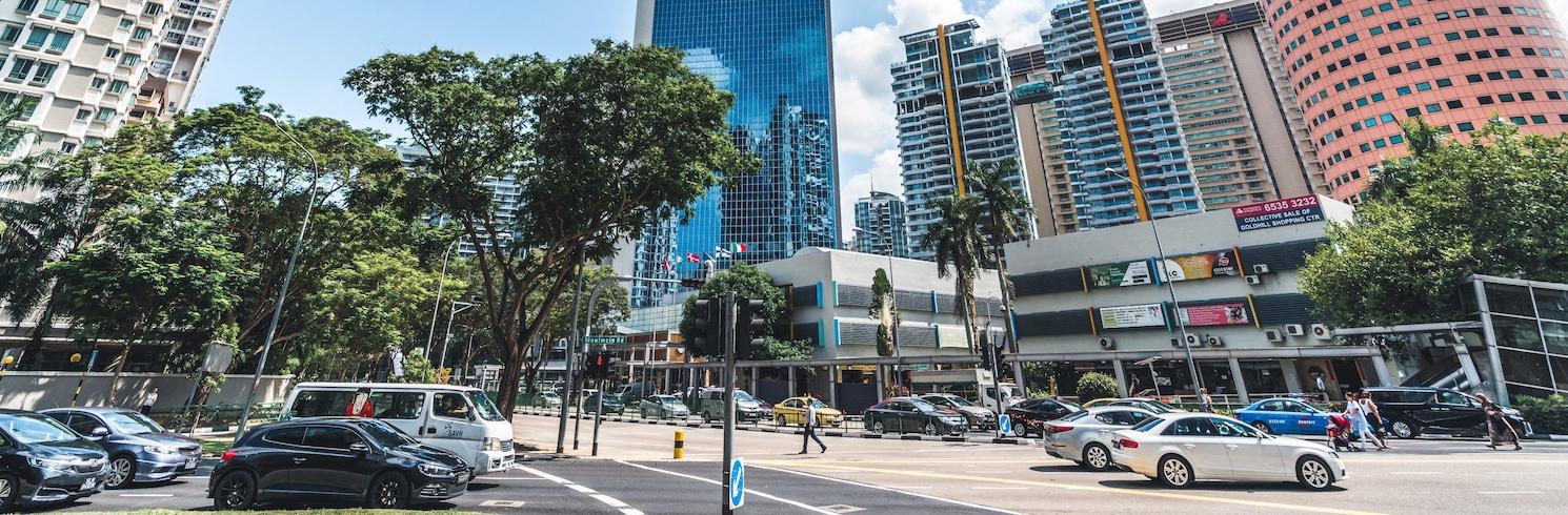 Singapūras, Singapūras