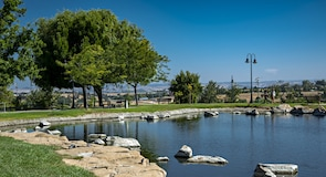 Barney Schwartz Park