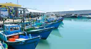 Fugang Fishery Harbor