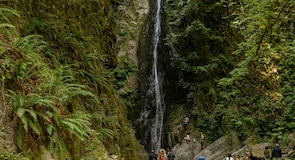 Goldstream Provincial Park (luonnonpuisto)