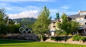 Район Village North