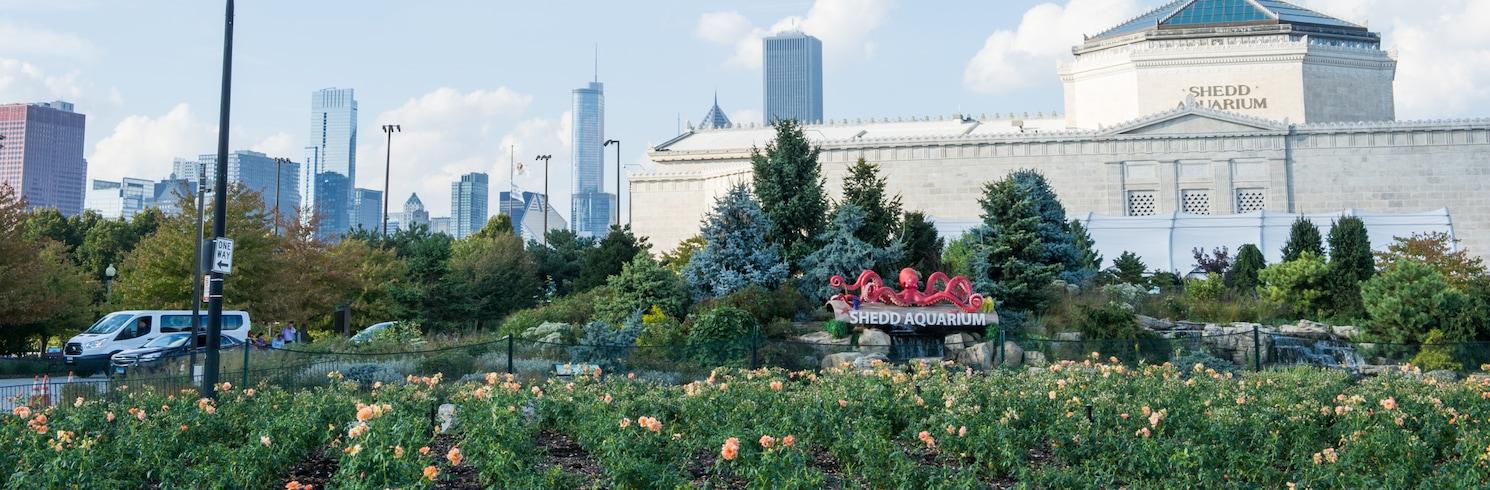 Σικάγο, Ιλινόις, Ηνωμένες Πολιτείες