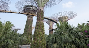 Gardens by the Bay park