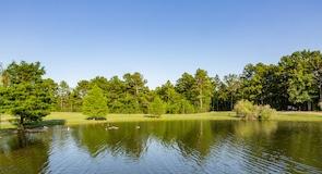 Dorey Park