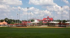 Snowden Grove Baseball