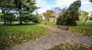 San Daniele Parkı