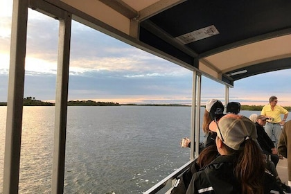Wildlife Eco Tour of the Indian River Lagoon with Experienced Captain