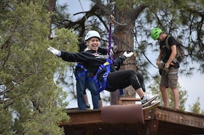 6-Zipline Adventure in the San Juan Mountains near Durango