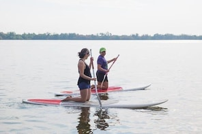 Kayaks ,paddle Boards And Bird Watching