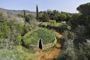 Cerveteri - The Etruscan Necropolis Private Tour from Rome