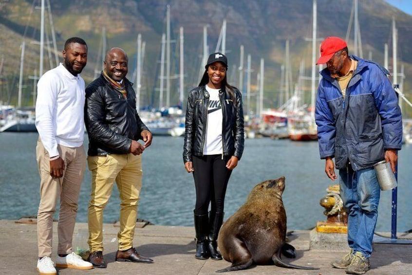 Seal Island encounters