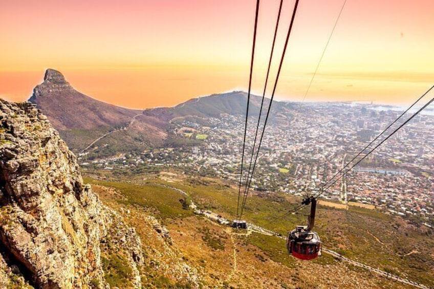 Table Mountain, Penguins & Cape Point Small Group Tour from Cape Town