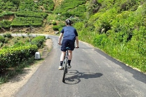 Cycle from Adam's Peak to Kithulgala and go white water rafting