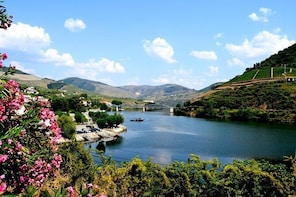 Douro Valley Small-Group Tour with Wine Tasting, and Optional Lunch and Cru...