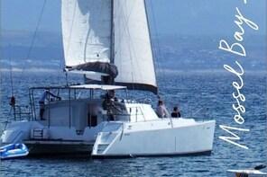 Mossel Bay Sailing Trips on 40 ft Cat.- Kiyana around Seal Island, swim, sn...