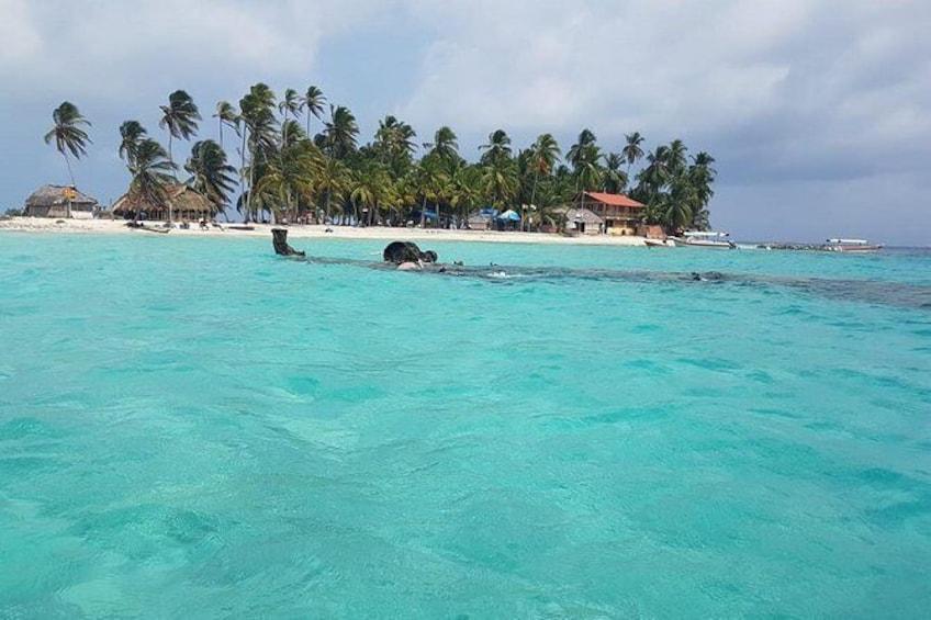 Show item 4 of 19. Perro Island