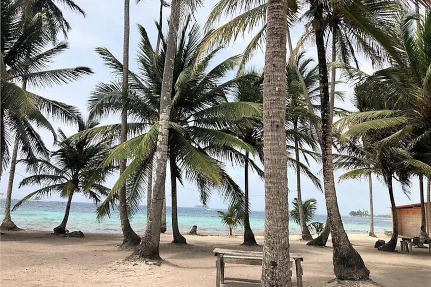 Show item 4 of 20. Visit San Blas Islands in a Day Tour and Snorkeling experience with 4 spots