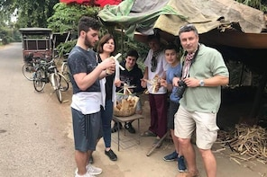 Morning half day tour to bamboo train,countryside,handicrafts,test local sn...