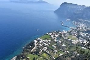 Private Capri and Blue Grotto Tour from Positano
