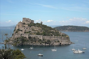 Ischia Private Tour around the Island with Local Guide&Driver and Hotel Pic...