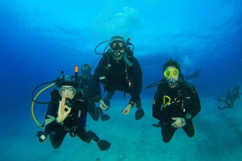 Show item 10 of 10. Discover Scuba Diving PADI