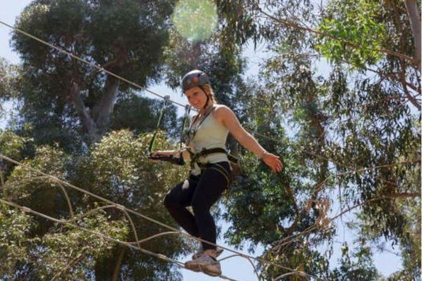 Show item 3 of 5. Catalina Island Aerial Adventure