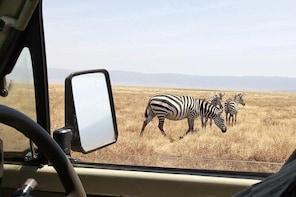 Mkomazi day trip