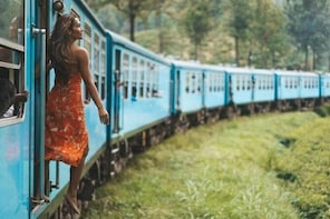 Scenic Train Ride Ella To Horton Plains National Park And Drop Nuwara Eliya