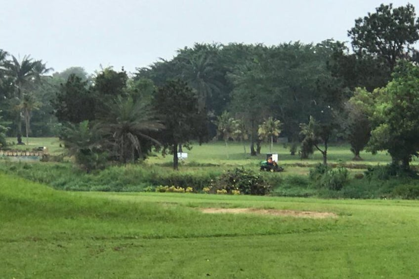 Beautiful landscape and lush greens for your round! Come see the coffee, cocoa, mangos grow !